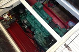 Piraya Marino FPT S30 230HP